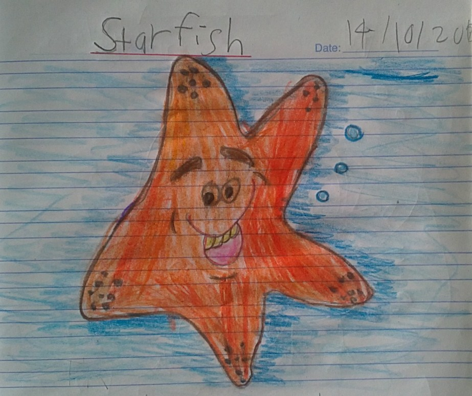 the arm of the starfish essay More starfish essay topics an adult of this species ranges from 25 to 35cm in size and is seen with up to 21 arms the coloration of these animals is usually on the.
